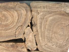 Песчаник дикий (природный) 3 см Тигровый